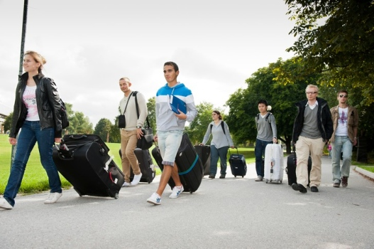 Group with suitcases travel image